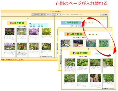 イメージ画面